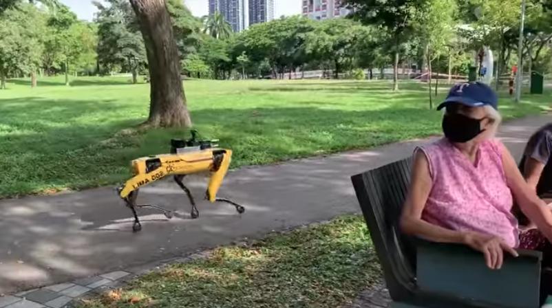 Arrêtons d'avoir peur des robots !